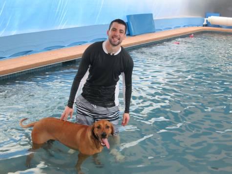 dog friendly houston