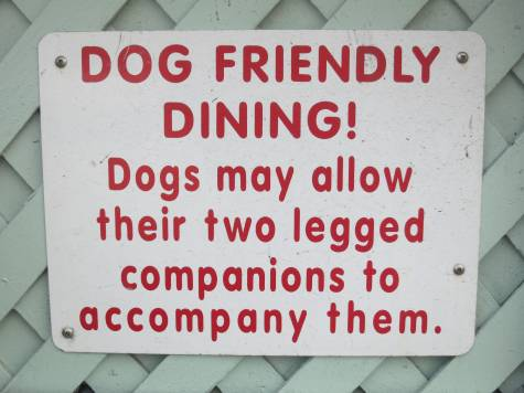 dog friendly dining california