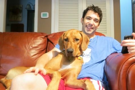 dog friendly blog pet friendly chicago