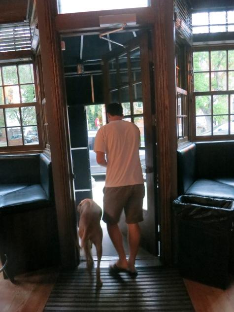 dog friendly bar pet friendly travel