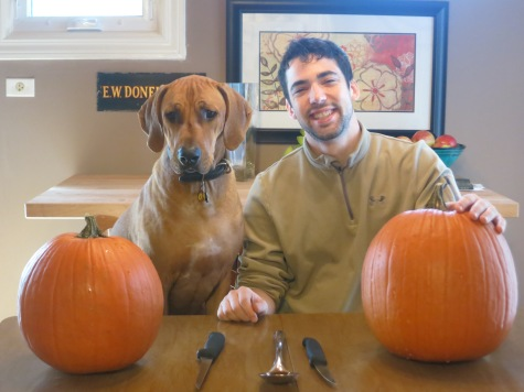 rhodesian ridgeback, pet friendly blog