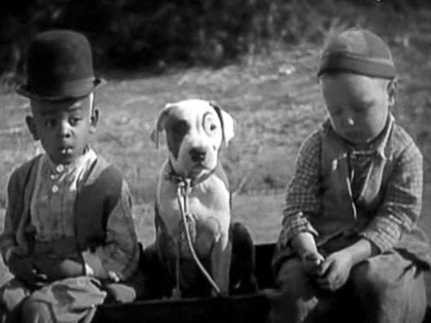 top ten dogs in movies | Marking Our Territory