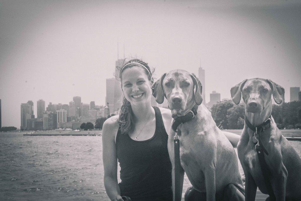 Rhodesian Ridgeback, puppy, chicago, cute, adventure